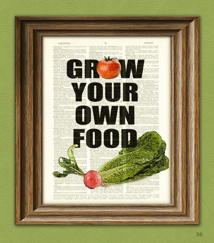 growyourownfood